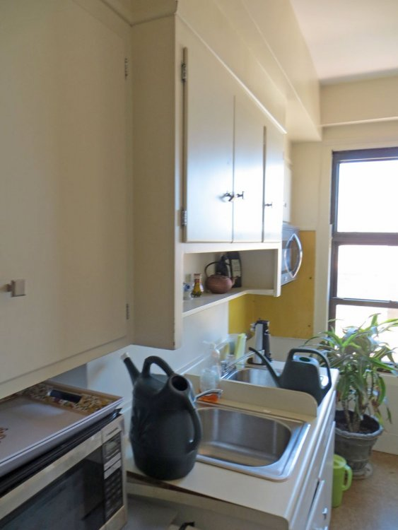 352205164_kitchen-SWviewwwallsharedbydiningroom.thumb.JPG.ecb152ae8763ab42add196513e176ba0.JPG